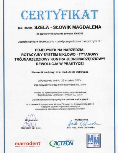 stomatologia_dyplom_32_S