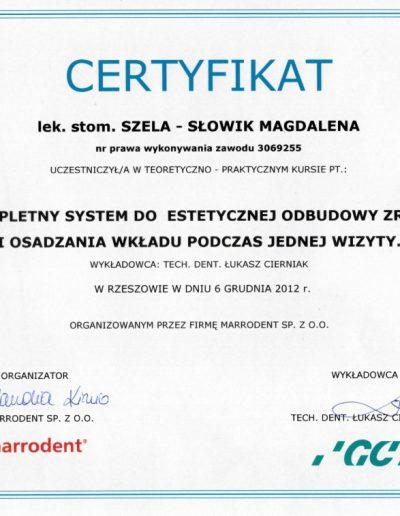 stomatologia_dyplom_33_S